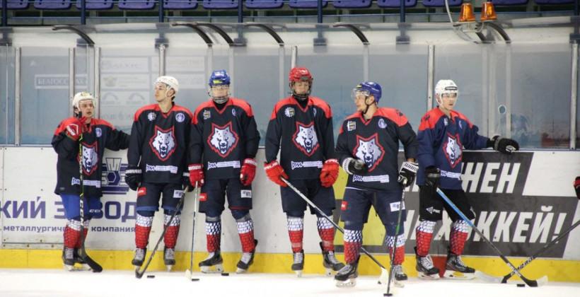 Каракулько, Печур, Рак и еще 36 хоккеистов находятся на просмотре в Металлурге